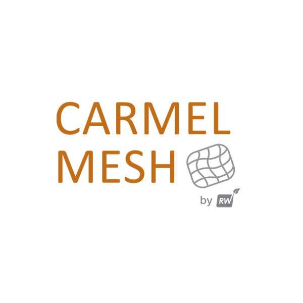 Carmel Mesh