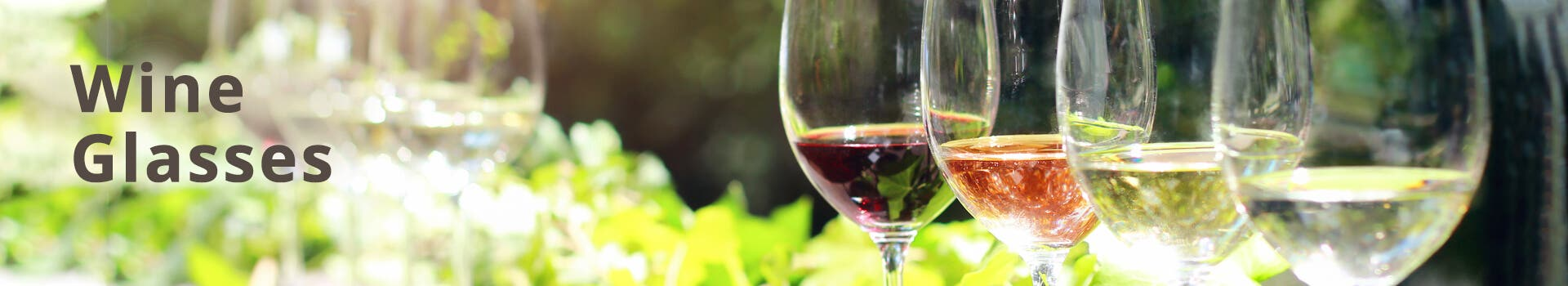 Round Wine Glasses