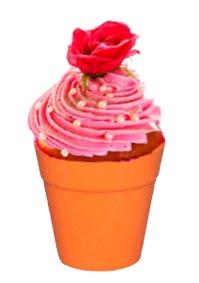 flower pot for cake serving