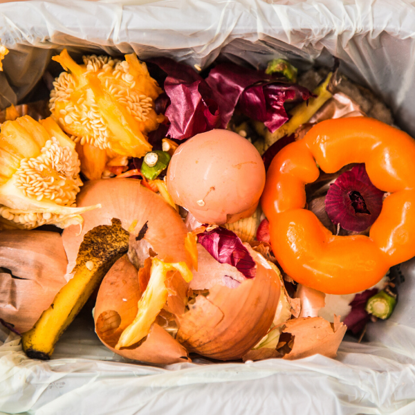 How Reducing Food Waste Can Save Your Restaurant