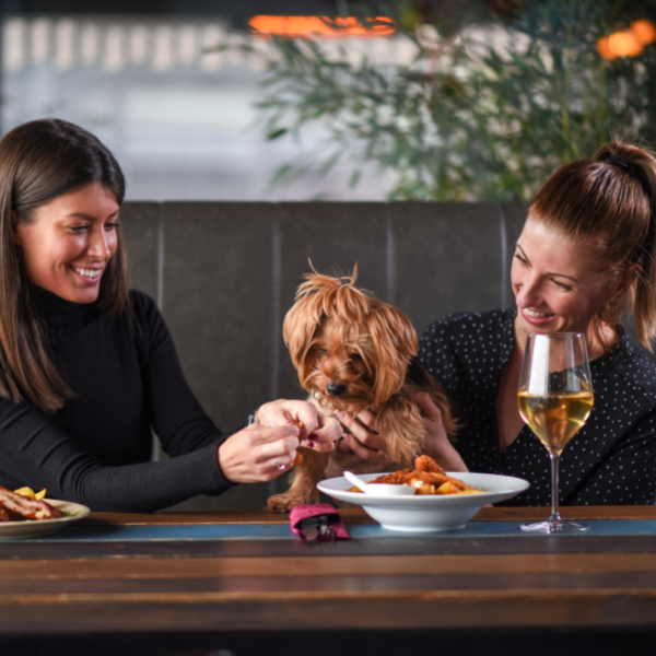 How To Add Menu Items For Dogs
