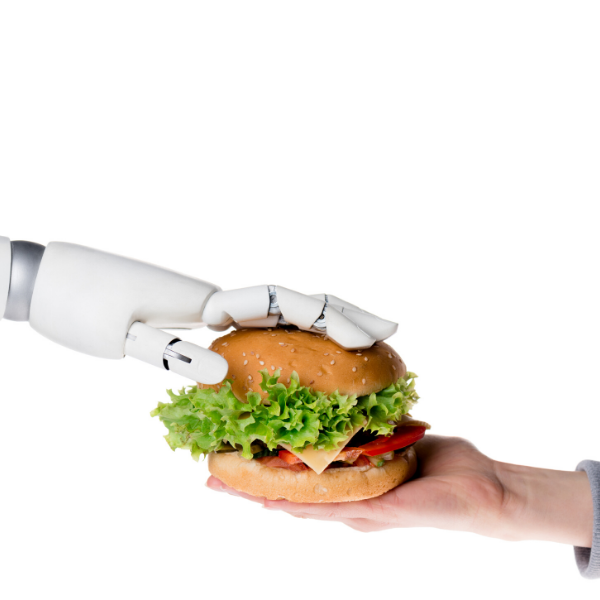 Kitchen Robots: The Future of the Restaurant Industry