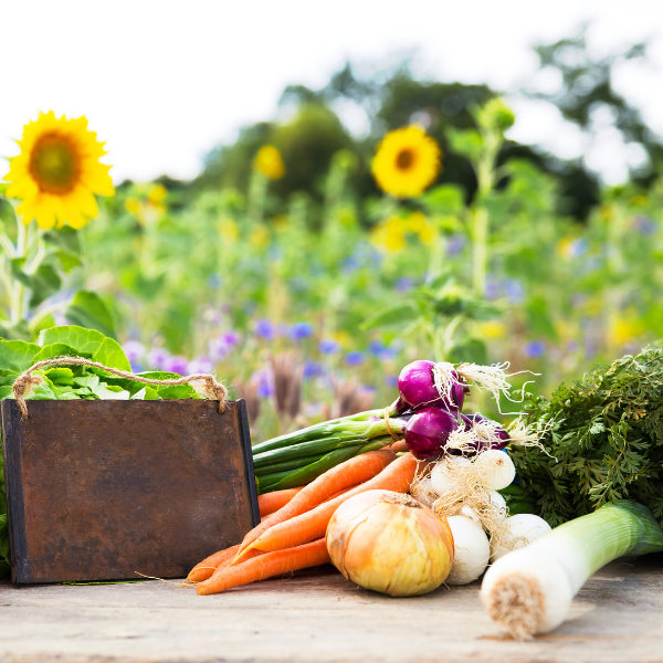 What Is Farm To Table?